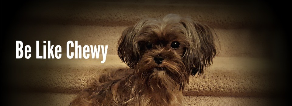Be Like Chewy cropped